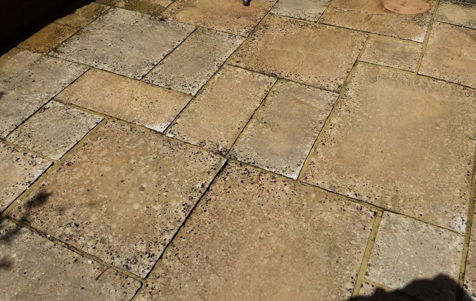 Removing Black Spots from Patios